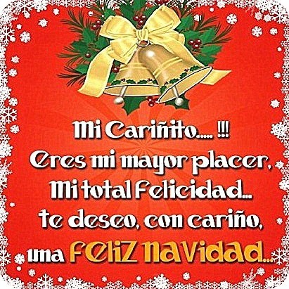 Lindas Frases Para Dedicarle a Mi Amor En Esta Navidad