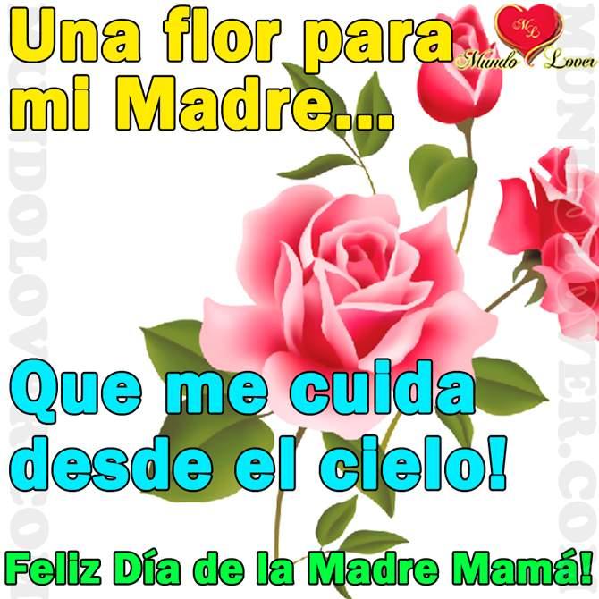 Bellas Imágenes Con Flores Para Dedicar a Mi Madre Que Esta En El Cielo