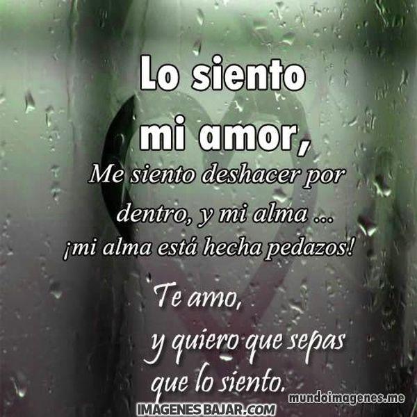 Lindas Frases Para Pedir Disculpas a Mi Amor