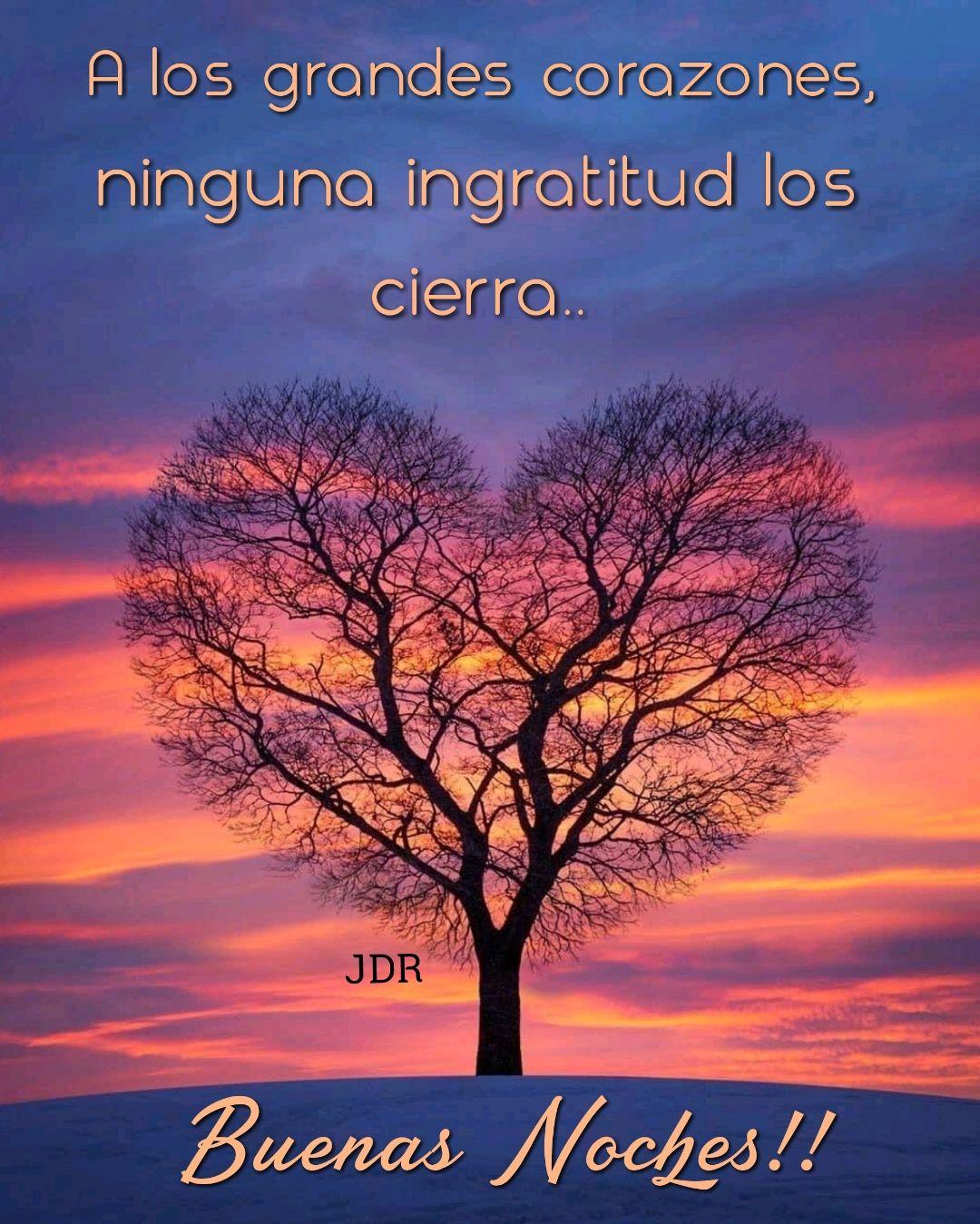 Imágenes De Buenas Noches Con Lindas Frases
