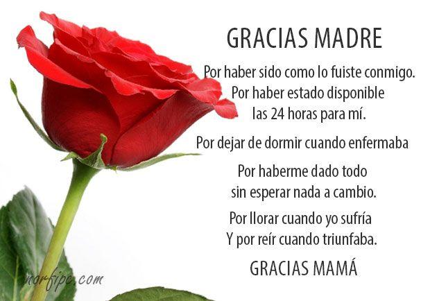 Frases De Amor a Mi Madre